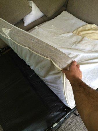 Aspen Meadows Resort: Another shot of the thin, horrible sofa mattress at aspen meadows