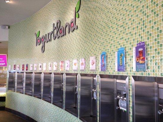 Yogurtland: どの味も美味しい!