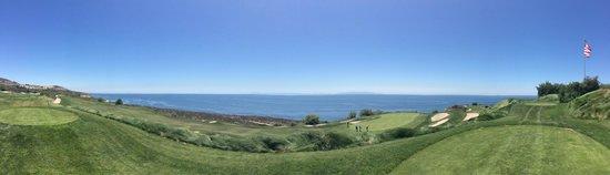 Trump National Golf Club : Beautiful!