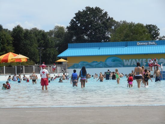 Dorney Park & Wildwater Kingdom : Full day of fun