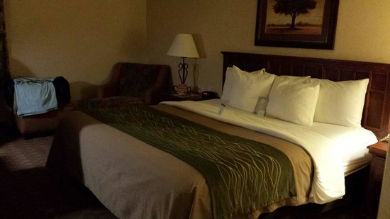 Comfort Inn St. Robert/Fort Leonard Wood: Spacious king size room.