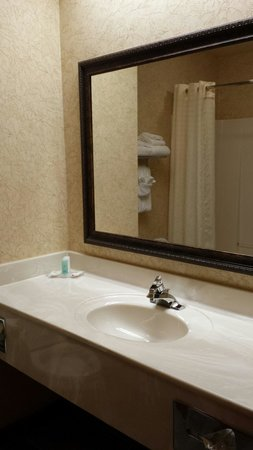 Comfort Inn St. Robert/Fort Leonard Wood: Great space for bathroom, counter, shower/tub.