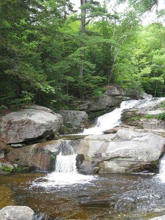 Step Falls Preserve Hiking Trail : August 15, 2014 step falls