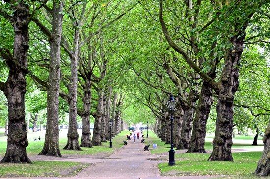 The Chesterfield Mayfair: Green Park