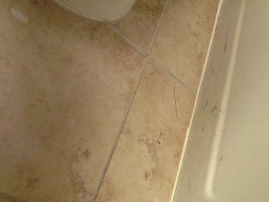 Airport Waterfront Inn: dirty bathroom