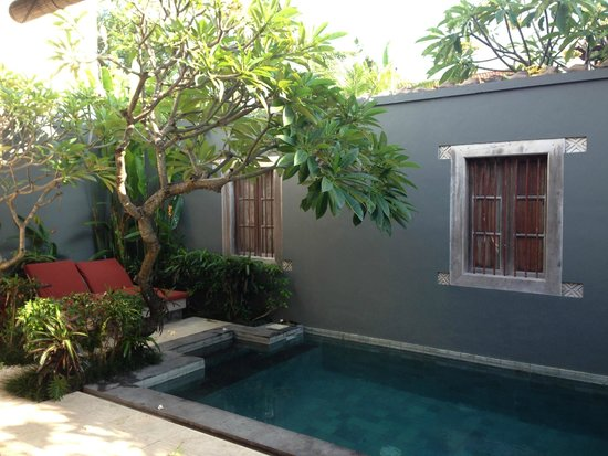 Bali Ginger Suites & Villa : 1 OF 2 Frangapane Trees. Beautiful