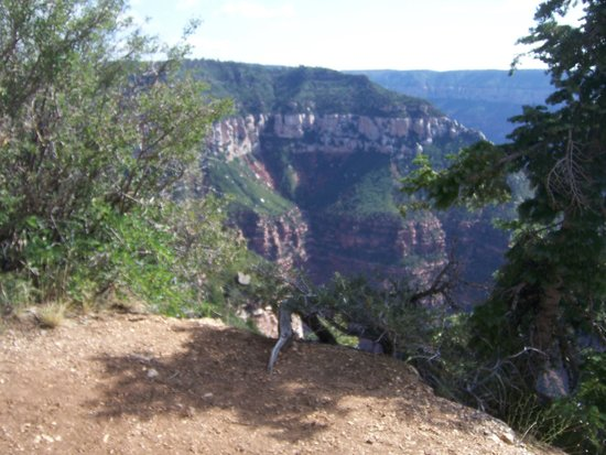 Grand Canyon by Red Rock Canyon Tours: Grand Canyon National Park