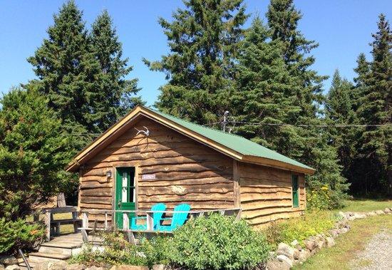 Mt. Van Hoevenberg Bed & Breakfast: Algonquin Cabin