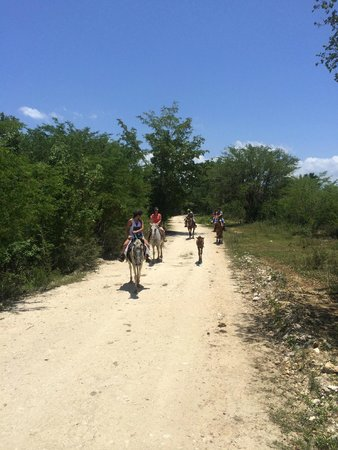 JuJu Tours: Riding down the trail to the beach!