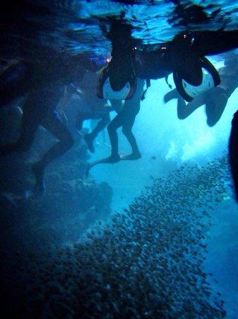 Cape Maeda: Swimming through the cave