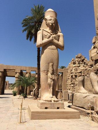 Memphis Tours : Luxor