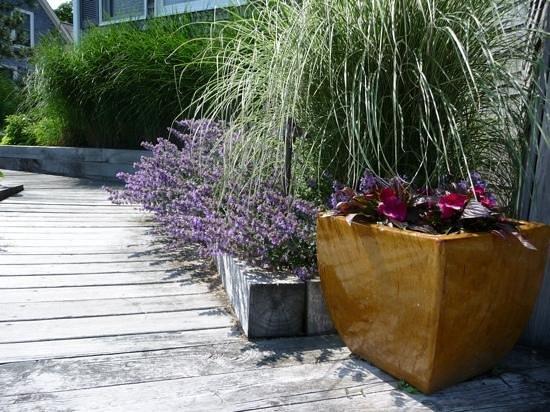 Inn on the Sound: side garden