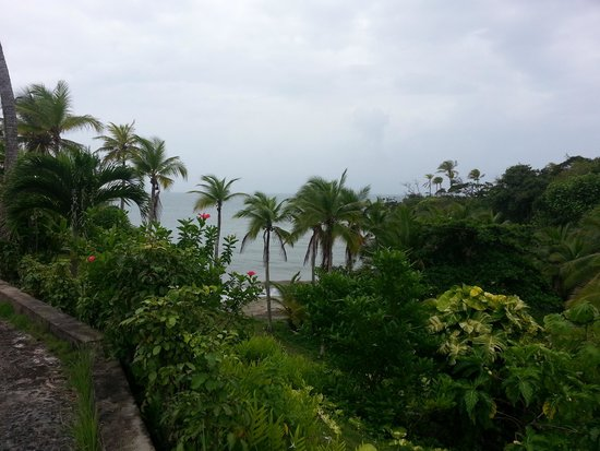 Morgan Bay Hotel: Beautiful grounds