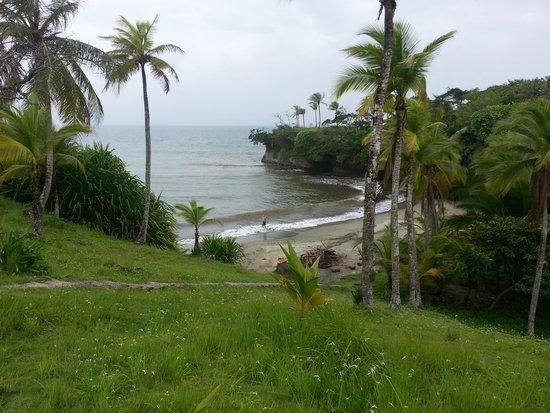 Morgan Bay Hotel: Beautiful beach