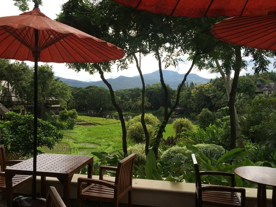 Four Seasons Resort Chiang Mai: View from Restaurant