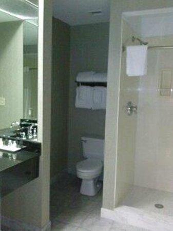 The Pelham : bathroom