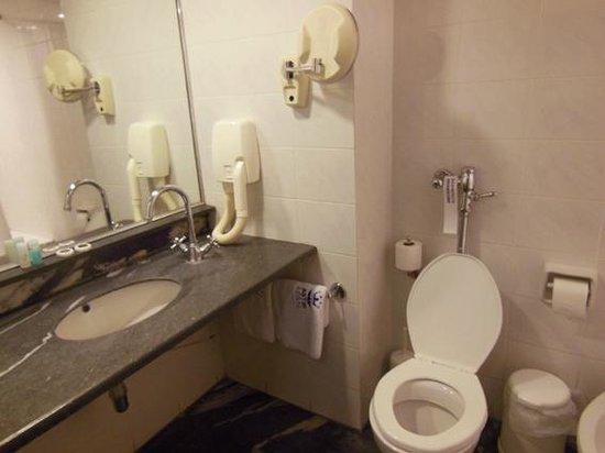 Astir Hotel : Bagno