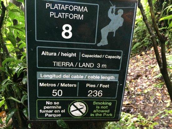Parque Selvatura: One of the Ziplines