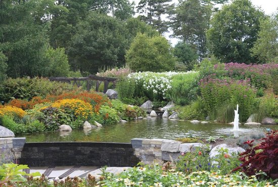 Coastal Maine Botanical Gardens : Quiet setting looking from the bridge