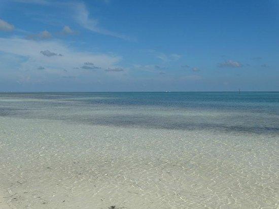 Anne's Beach: Islamorada