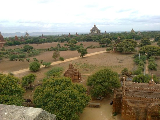 Temples de Bagan : View of the temples