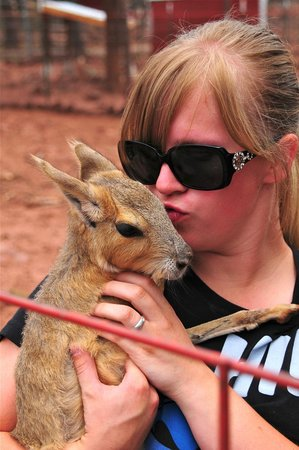 Grand Canyon Deer Farm: A Catie and animal keeper. Caties are giant rodents. NEW ADDITION to farm.