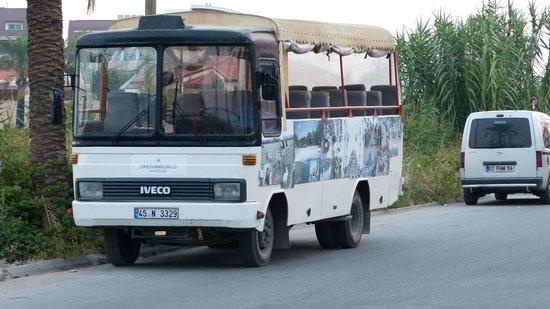 Dream World Resort: автобус на пляж