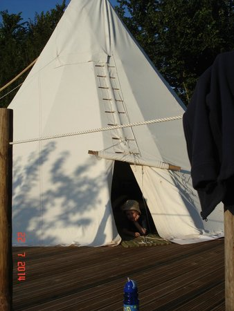 Huntstile Organic Farm: Wigwam by the pool