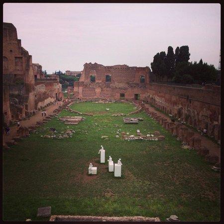 Roman Forum: The races