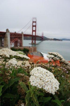 Puente Golden Gate: 雾中金门大桥