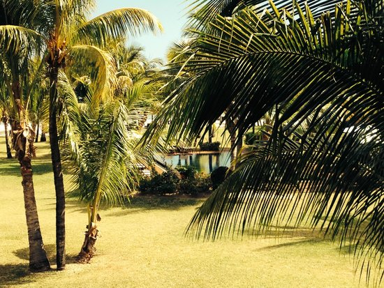 Dinarobin Beachcomber Golf Resort & Spa: Les bungalows