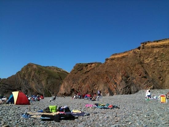 Sandymouth Holiday Park: A really interesting beach