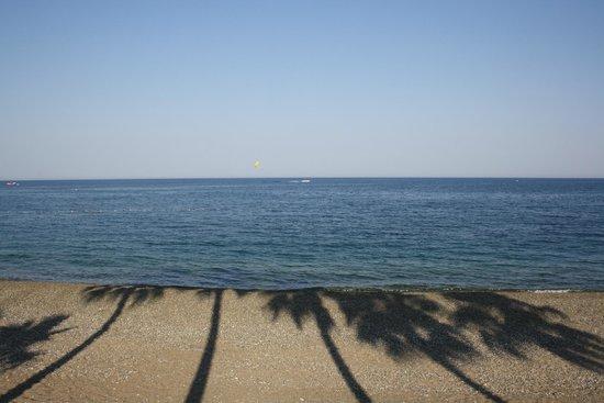 Club Med Palmiye : La plage