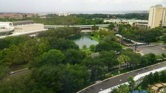 Hyatt Regency Orlando: Вид из окна