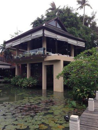Anantara Mai Khao Phuket Villas: The tree house