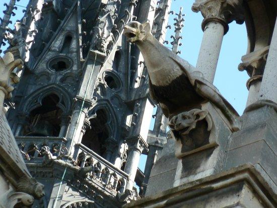 Catedral de Notre Dame: Химеры каменного реуса