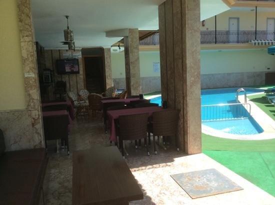 Ozlem 2 Apart Otel: poolside bar and reception area