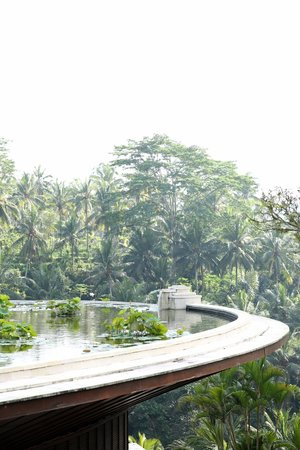 Four Seasons Resort Bali at Sayan: Lily pond roof top