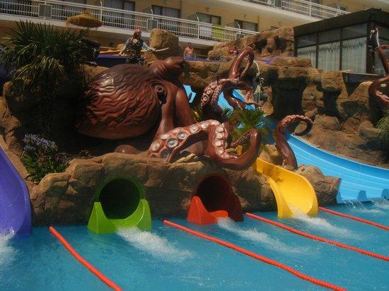 Evenia Olympic Park: Slides