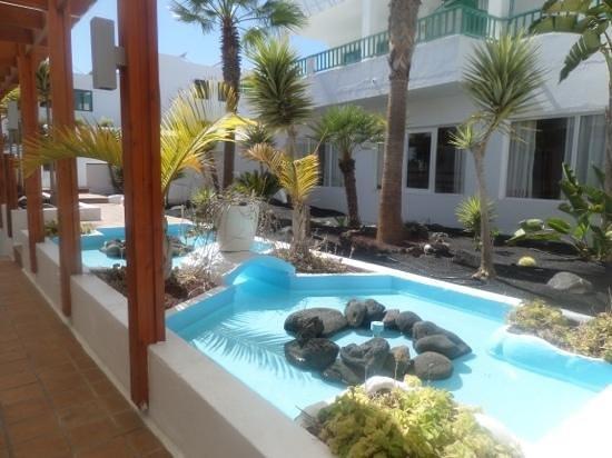 Blue Sea Los Fiscos: hotel pond