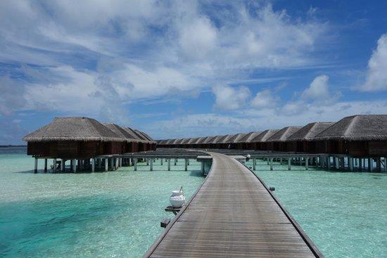 LUX* South Ari Atoll: water villas