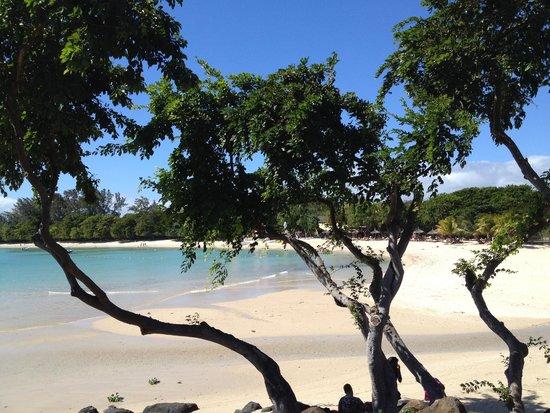 Club Med La Plantation d'Albion: plage