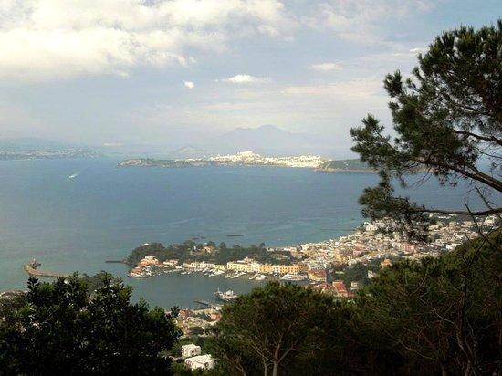 Bosco della Maddalena e Fondo d'Oglio