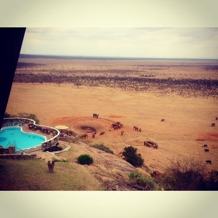 Voi Safari Lodge : la vista dalla nostra camera!