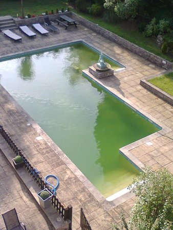 Hinton Firs Hotel: out door pool :-[