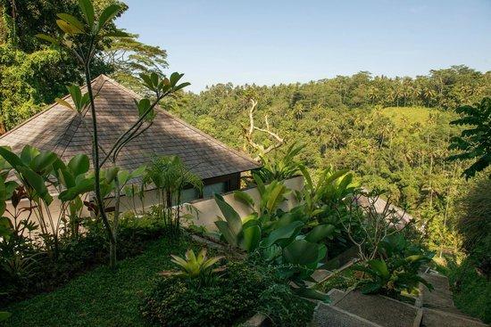 Black Penny Villas Ubud Updated 2018 Prices Amp Lodge