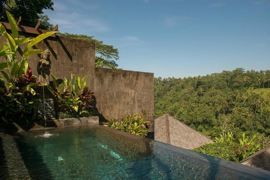 Black Penny Villas Ubud: Pool View Room