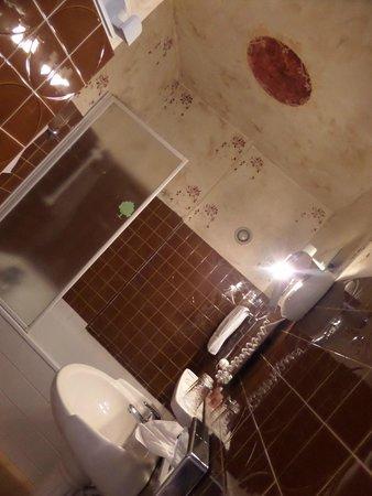HOTEL DU PARC : Bagno decorato