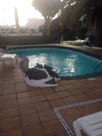 Apartamentos Los Tulipanes : The larger pool