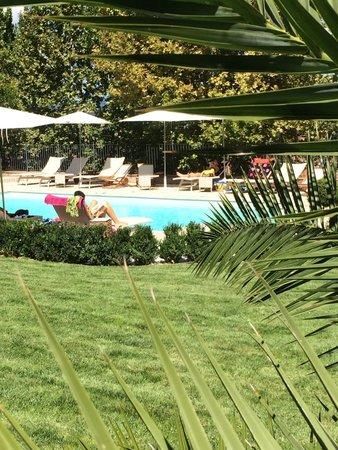 Hotel Al Grappolo d'Oro: Giardino e piscina